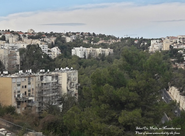 Haifa's fires - area untouched by fire