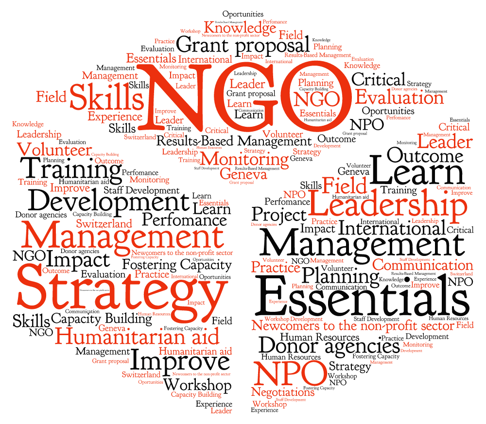 what is ngo Ngos range from small pressure groups on, for example, specific environmental  concerns or specific human rights violations, through educational charities,.